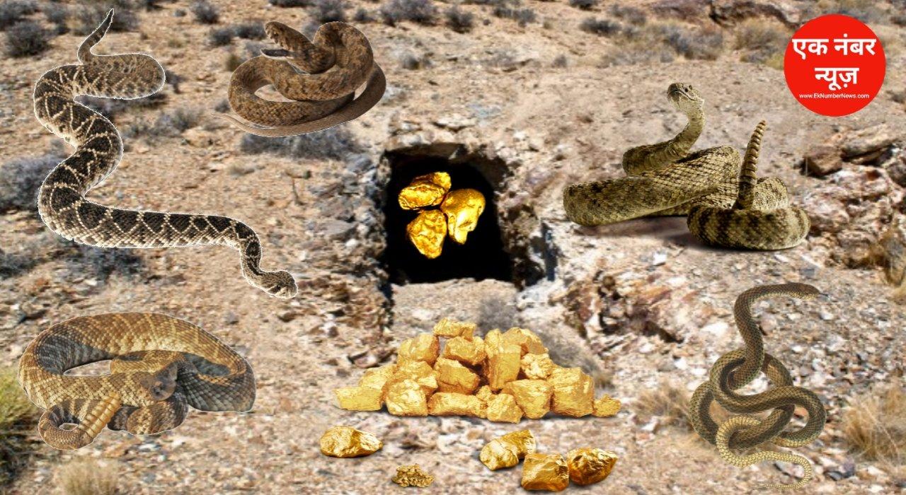 Snakes in Sonbhadra