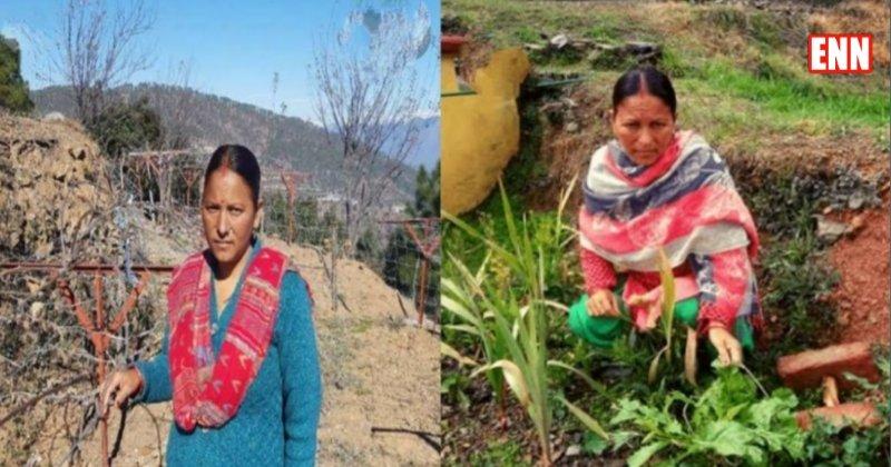 Sita Devi Kiwi farming