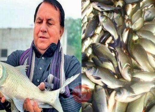 yatindra kashyap fishery business